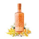 gin-silent-pool-rare-citrus-07l